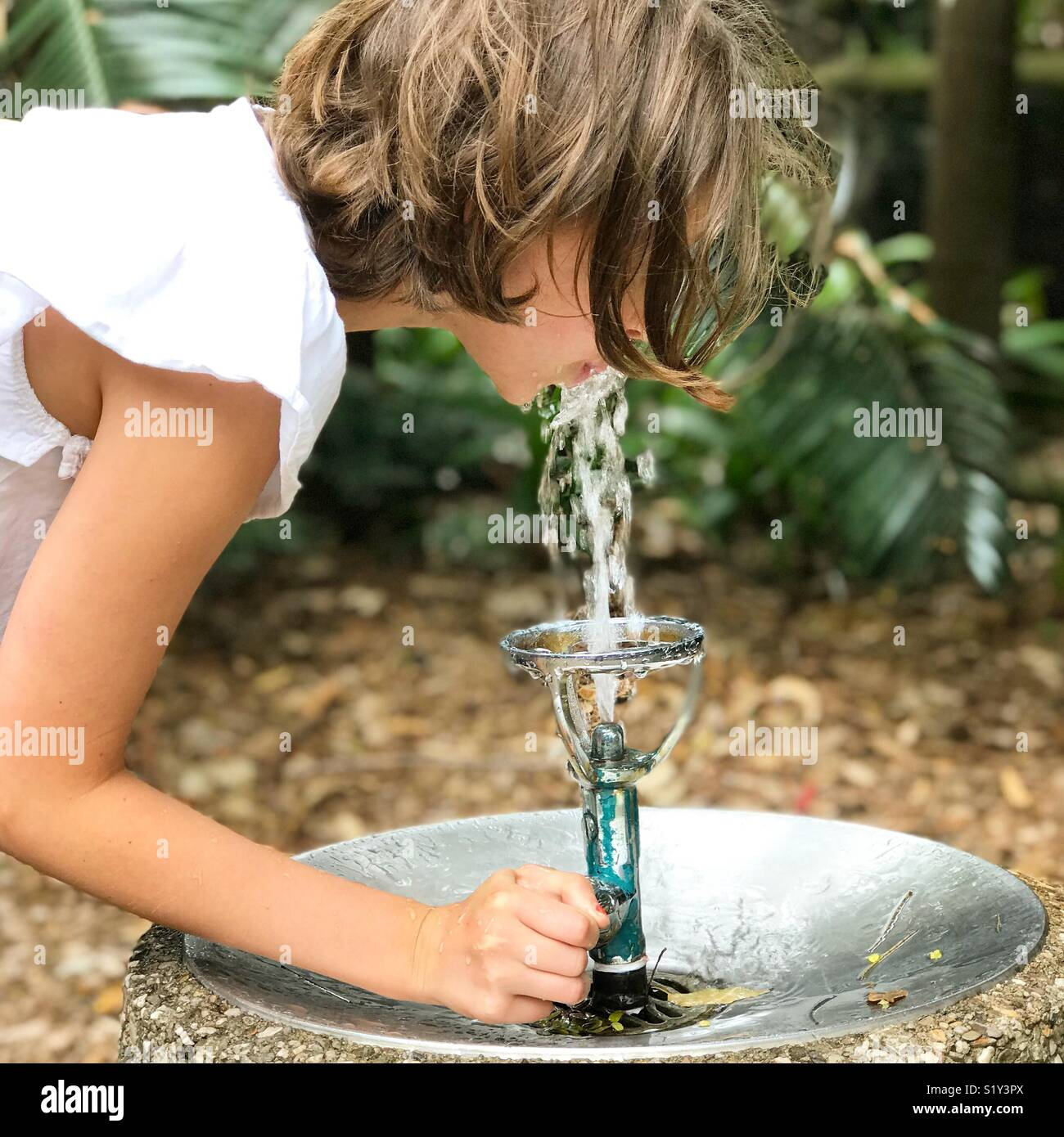 Young girl drinking at water fountain - Stock Image