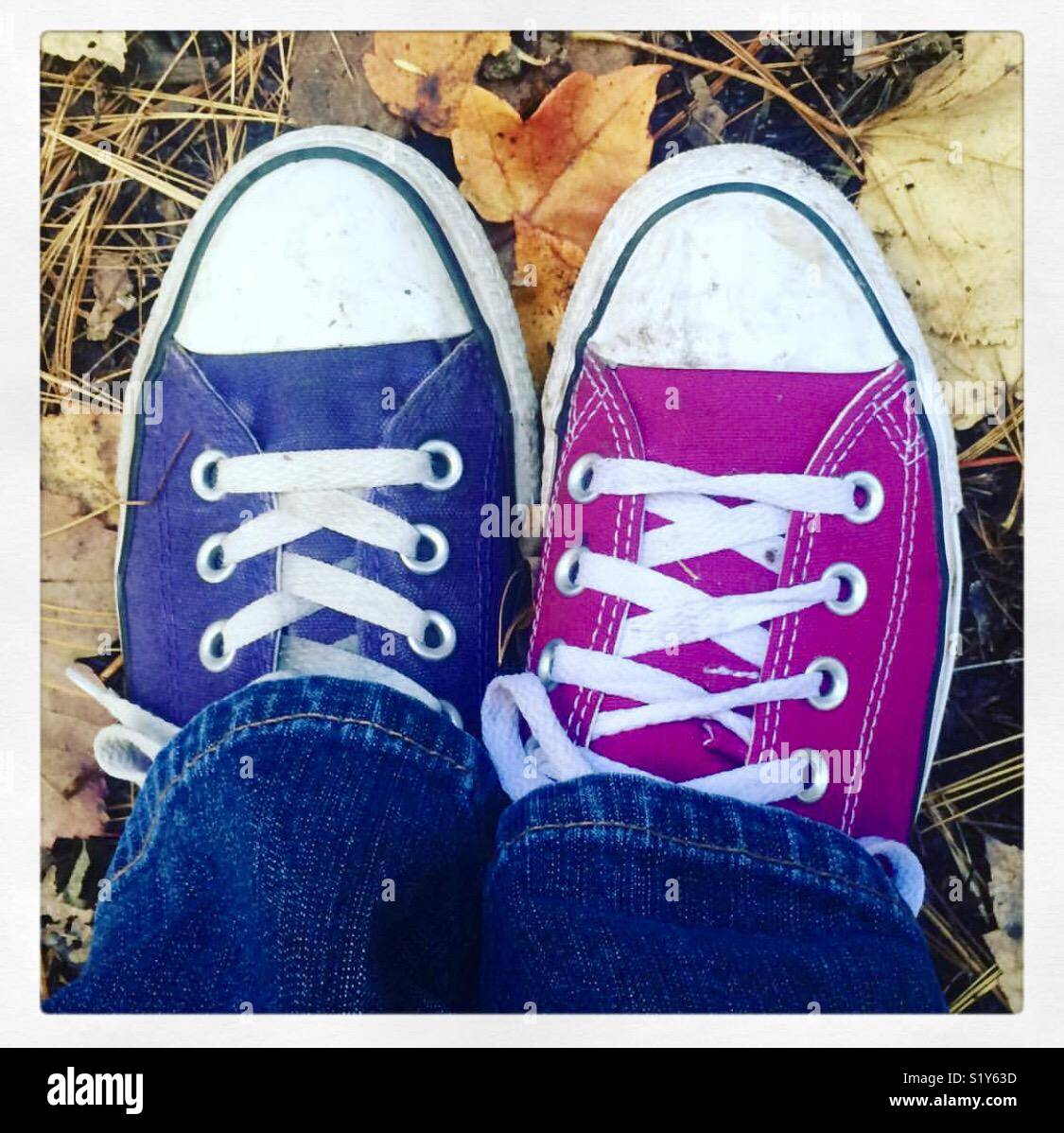 Purple and pink converse all stars running shoes - Stock Image