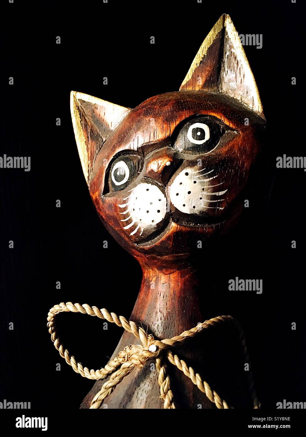 image of a cat's head Stock Photo