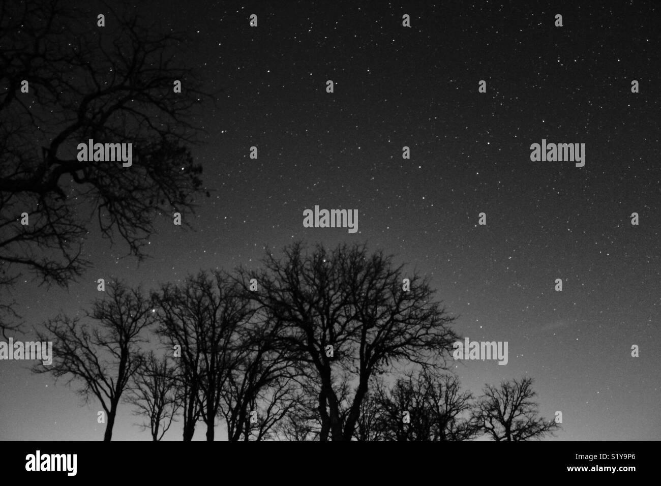 Texas night sky - Stock Image