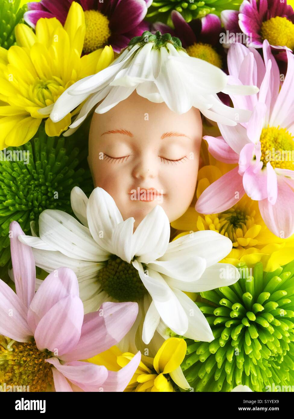 Contented, sleeping doll face in a bed of flowers. - Stock Image