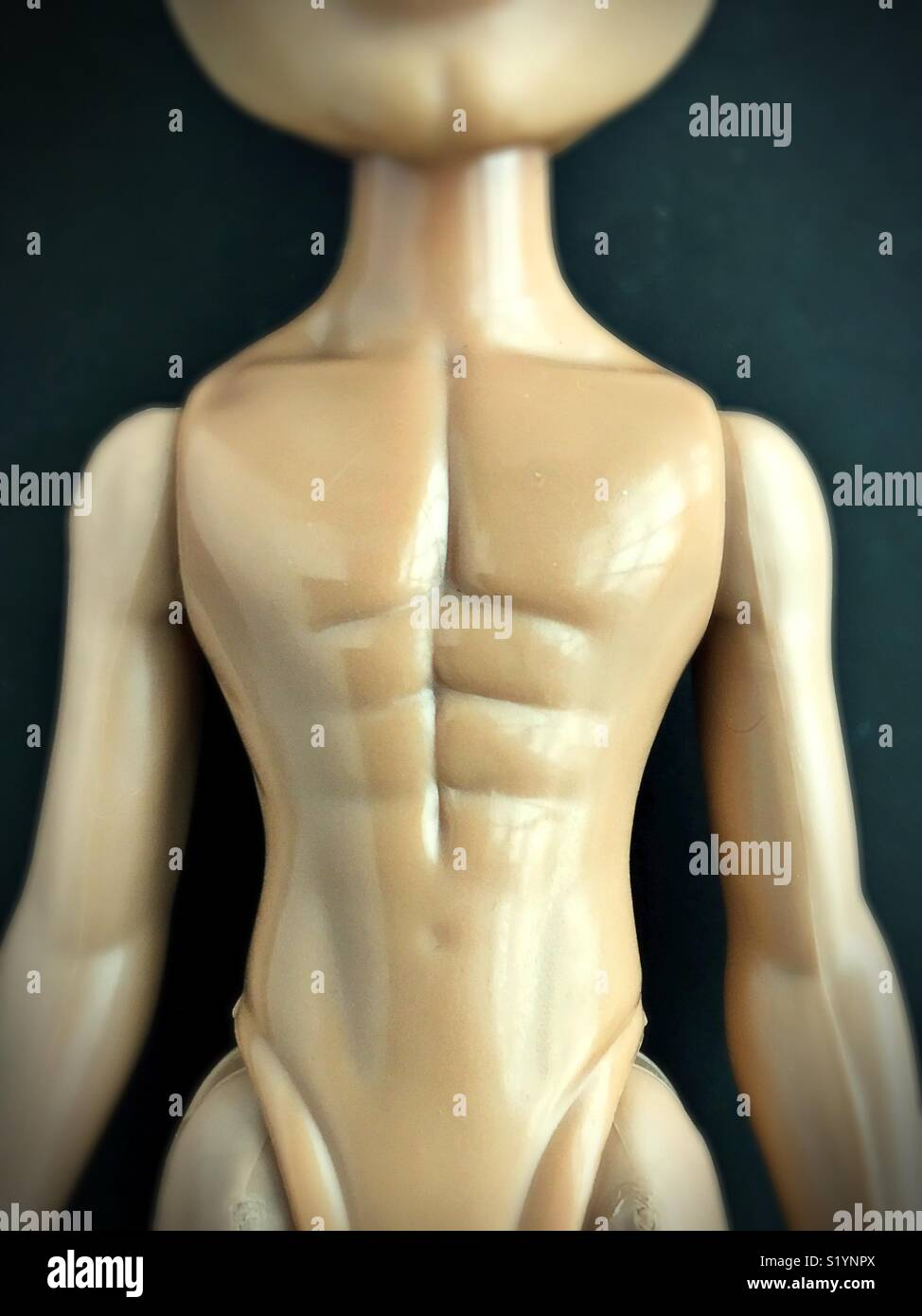 Close up of six pack abs on a male doll. - Stock Image