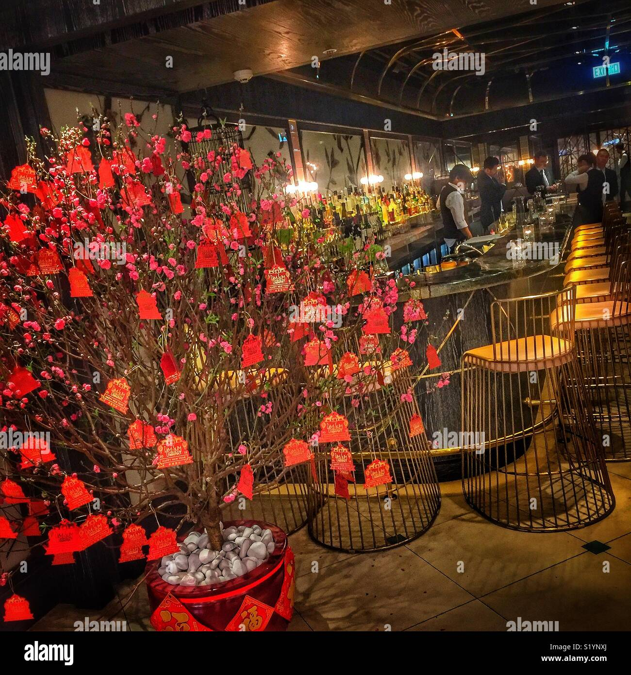 A Plum Blossom Tree Celebrating The Chinese New Year Of The Dog 2018 At The Entrance