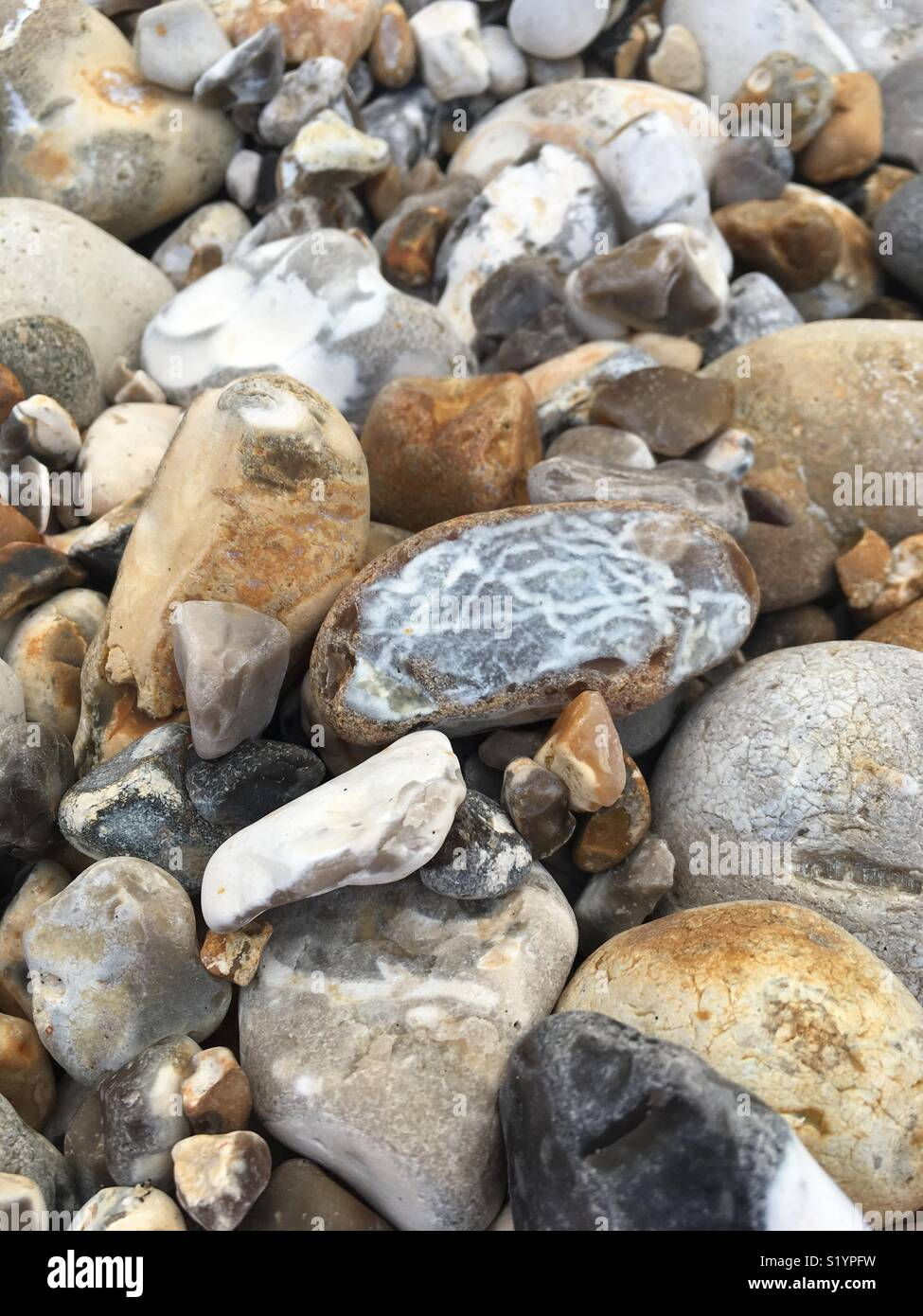 Variety of stones - Stock Image