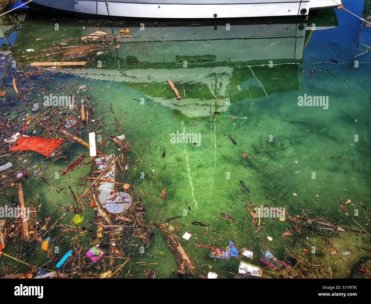 Water pollution in Waikiki boat basin - Stock Image