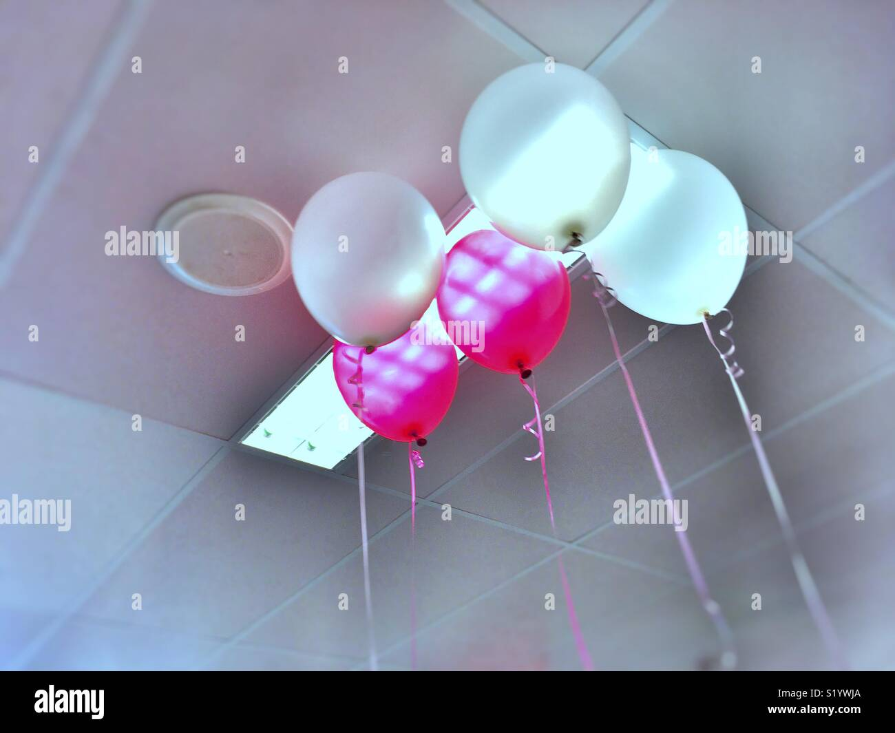 Helium balloons after the party. - Stock Image