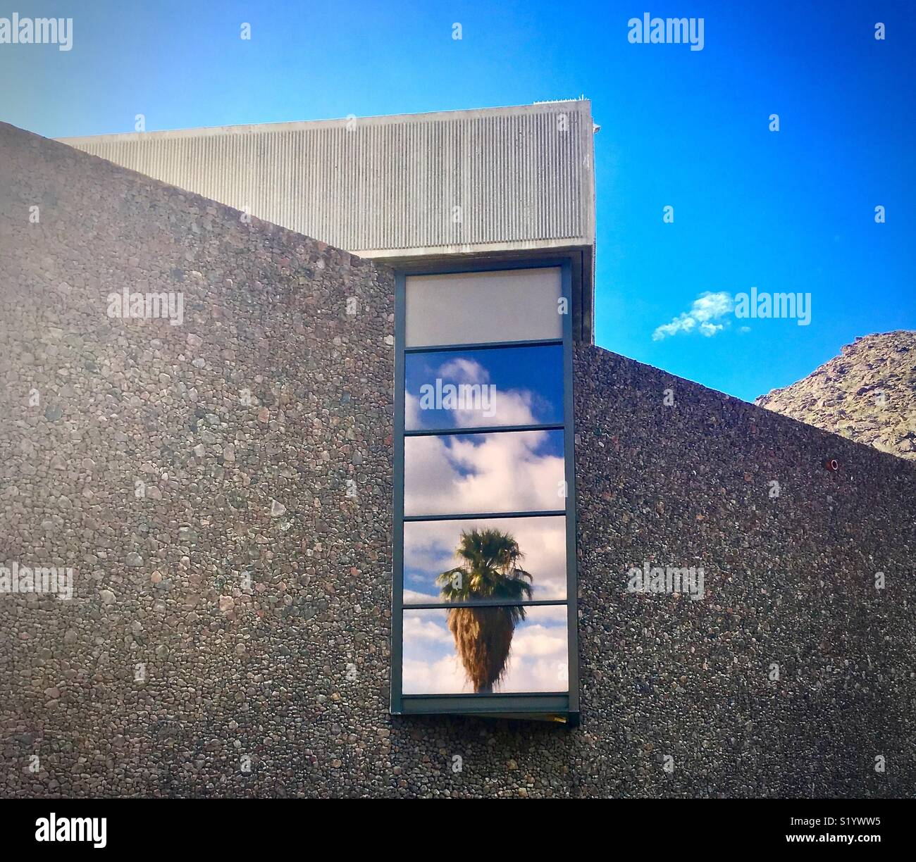 Palm tree reflection in window of modern concrete building - Stock Image