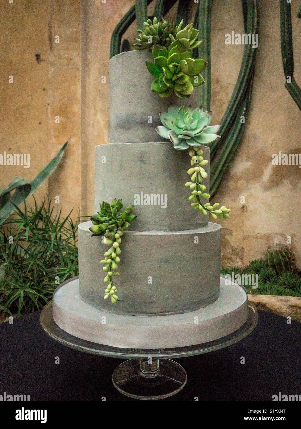 Brutalist three tier wedding cake with sugar succulent decorations - Stock Image