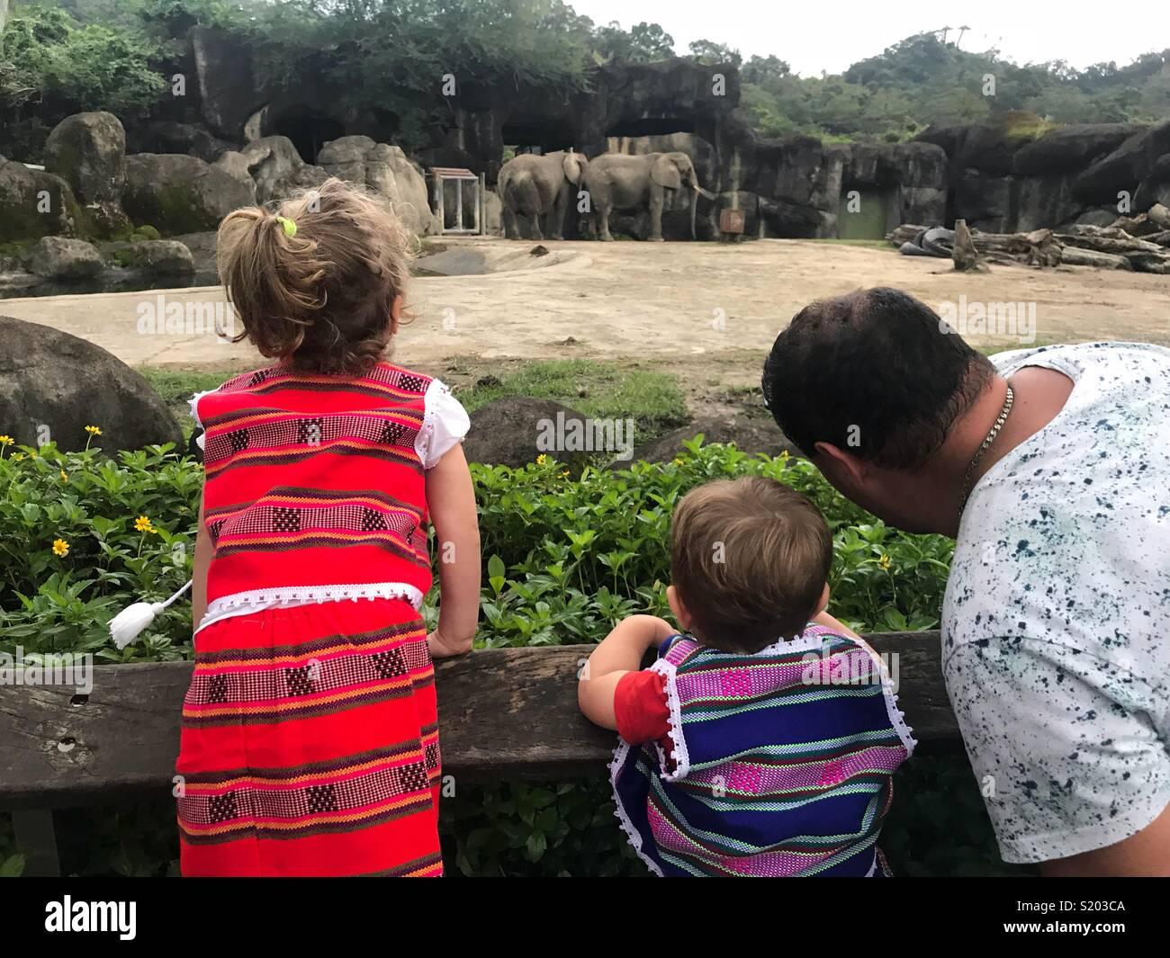 Family in zoo Taipei zoo Taiwan - Stock Image