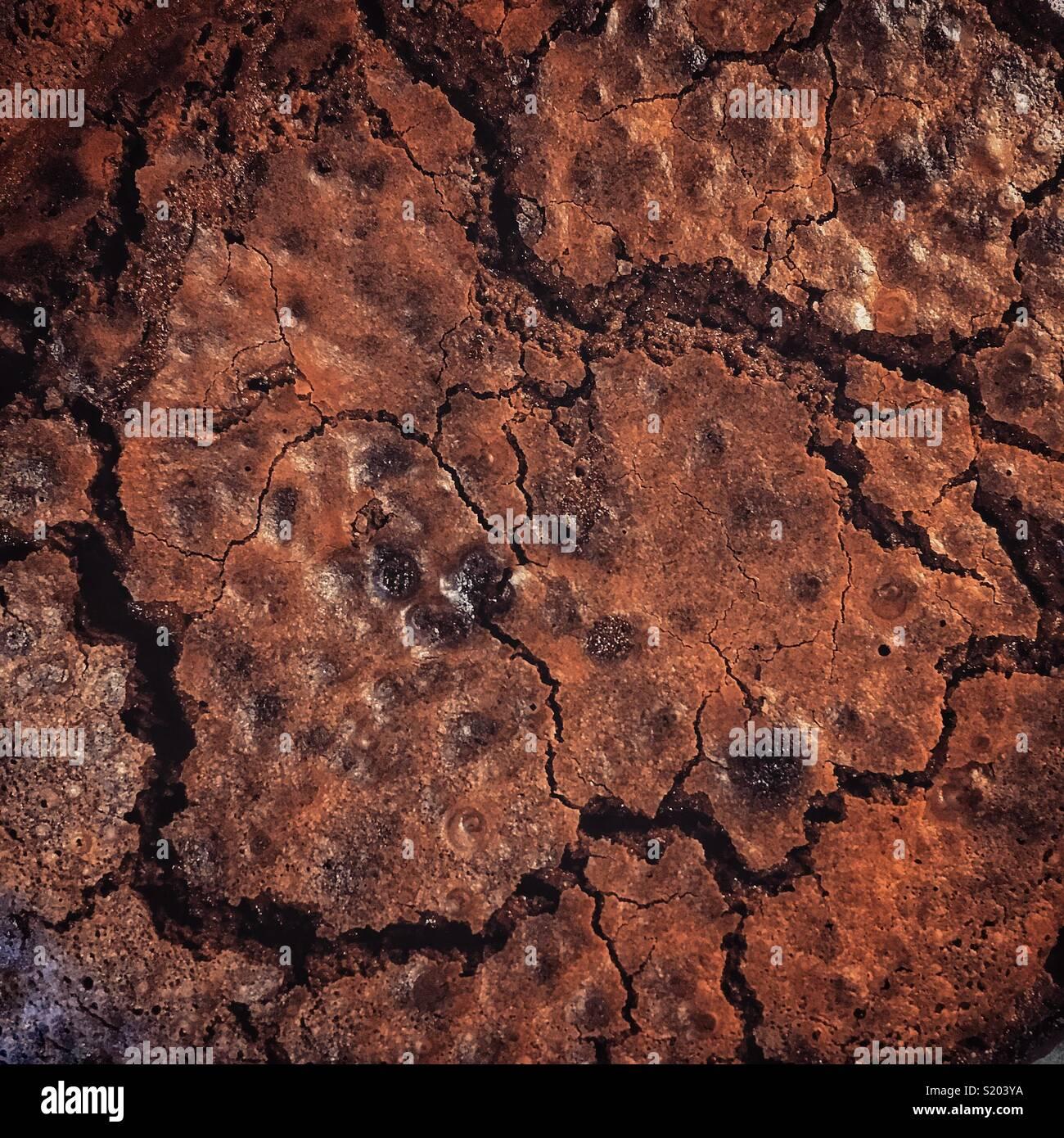Chocolate brownie - Stock Image