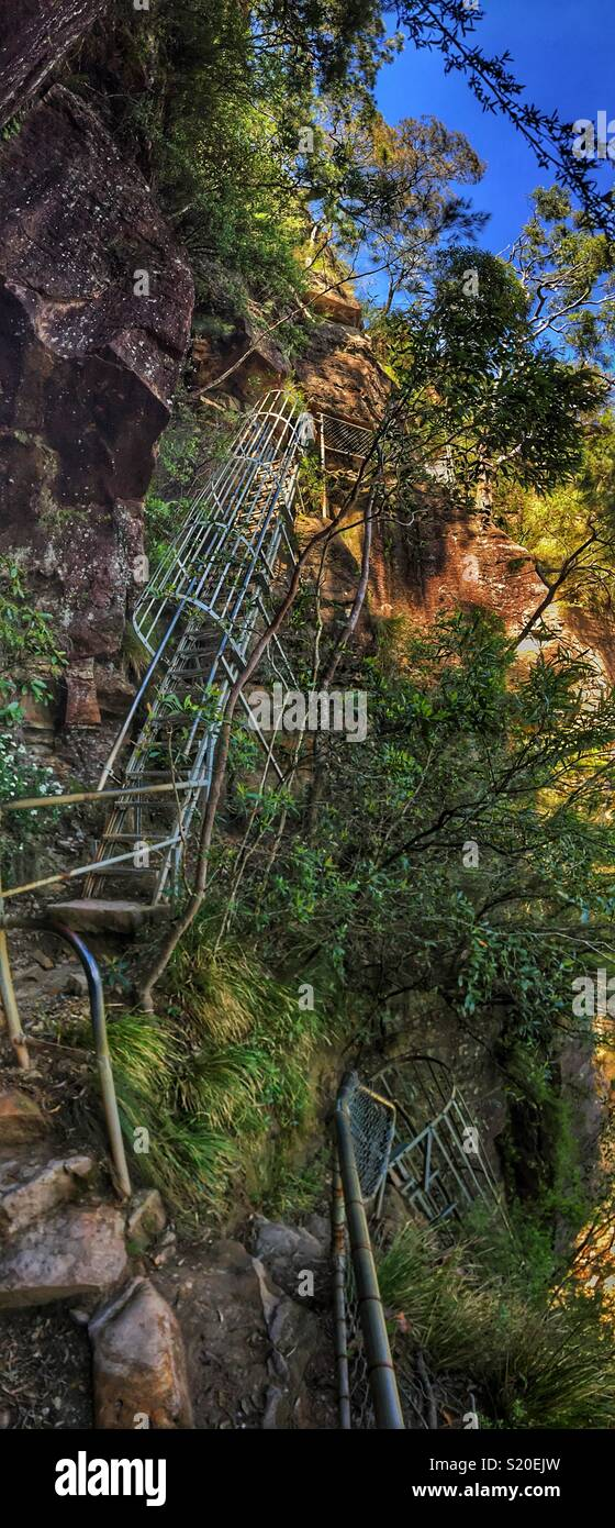 Slack Stairs, a series of nine steep ladders on the Wentworth Falls Loop Track, Blue Mountains National Park, NSW, Australia - Stock Image