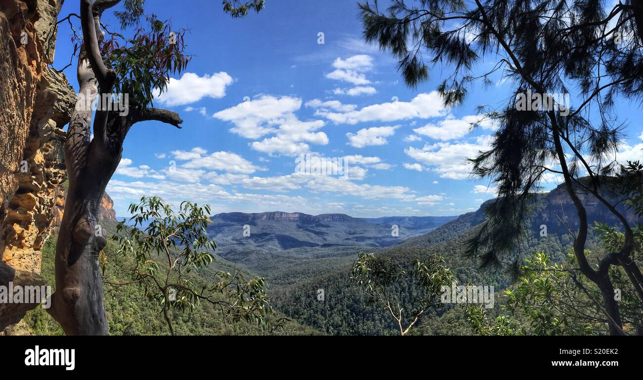 The Jamison Valley and Mount Solitary from Slack Stairs, Wentworth Falls Loop Track, Blue Mountains National Park, NSW, Australia - Stock Image