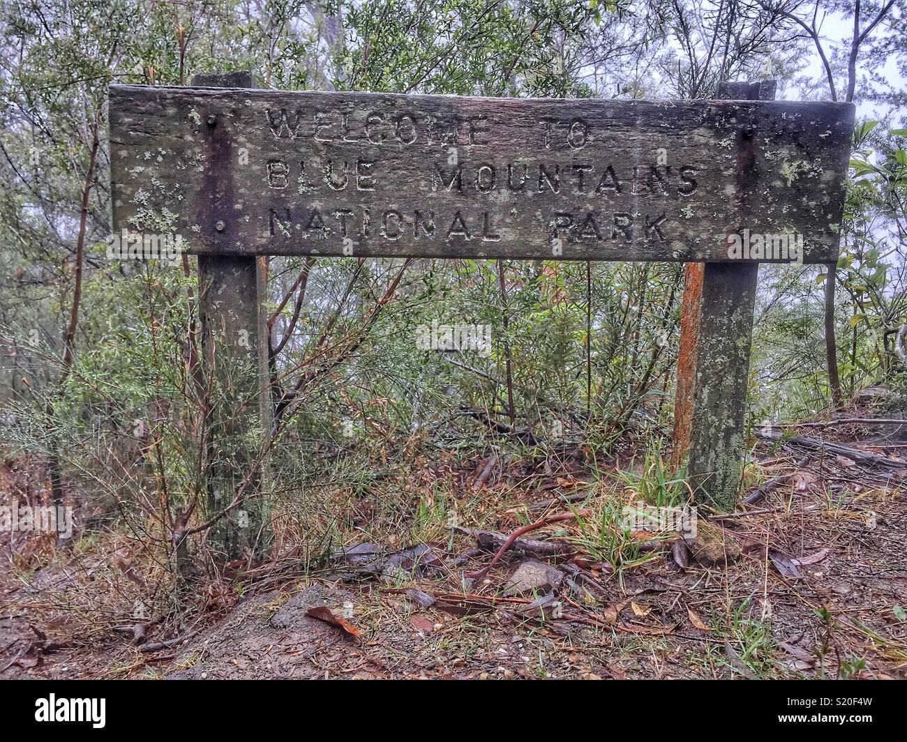 Weathered wooden sign, Prince Henry Cliff Walk, Leura, Blue Mountains National Park, NSW, Australia - Stock Image