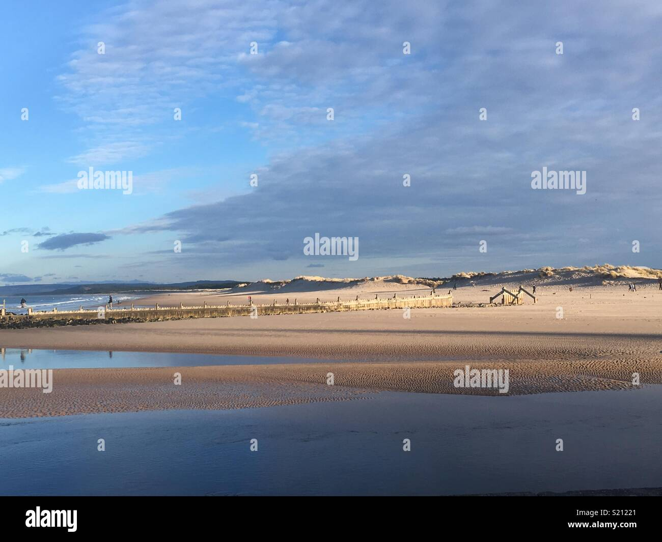 Lossiemouth East Beech - Stock Image