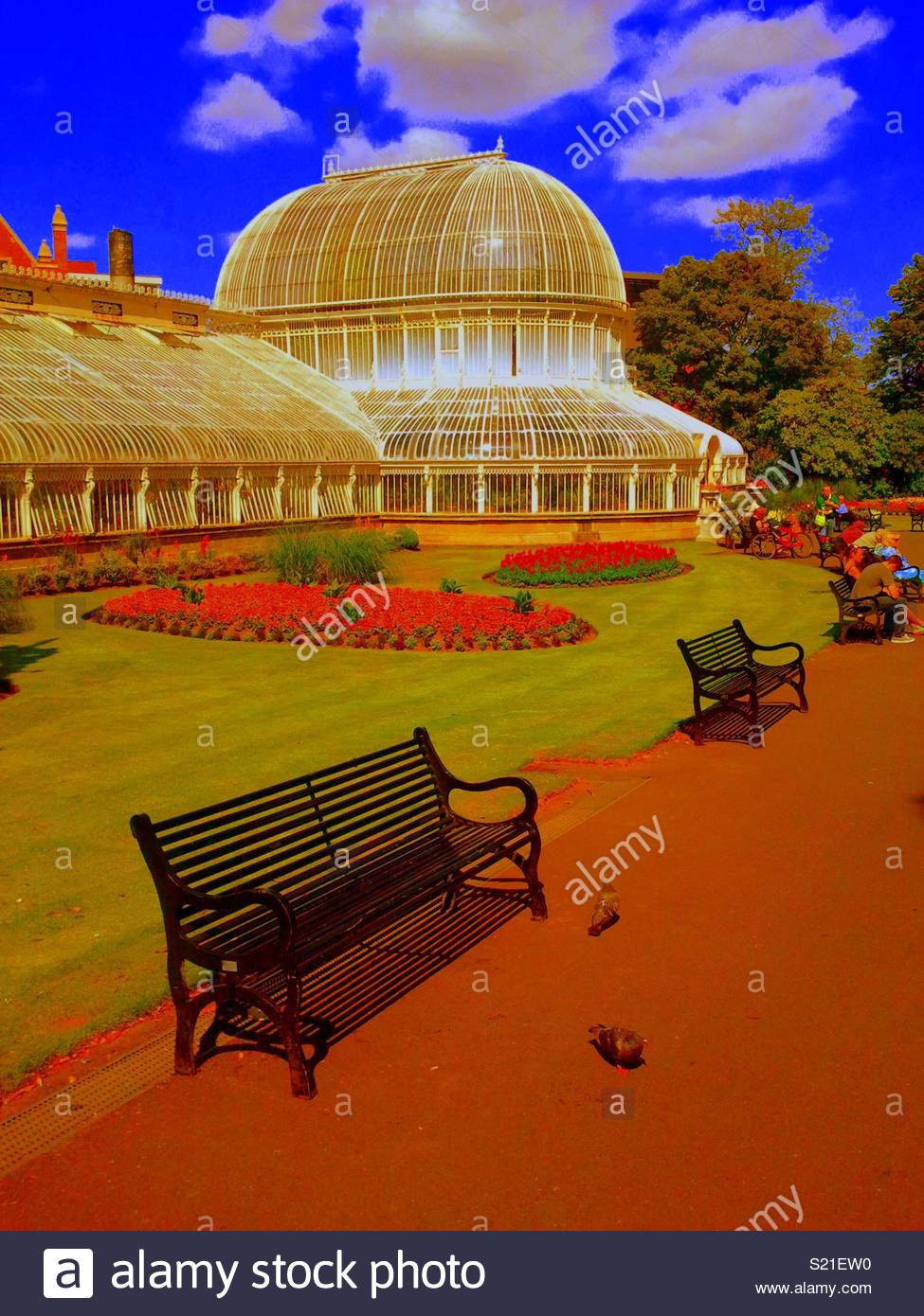 Carbonised edited picture of Belfast botanic gardens - Stock Image