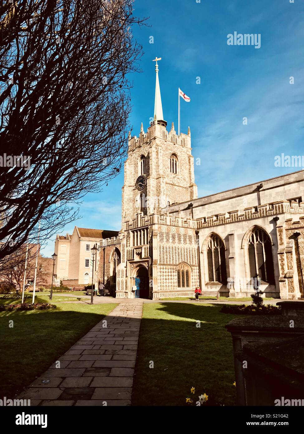 Chelmsford cathedral in the Spring sunshine - Stock Image