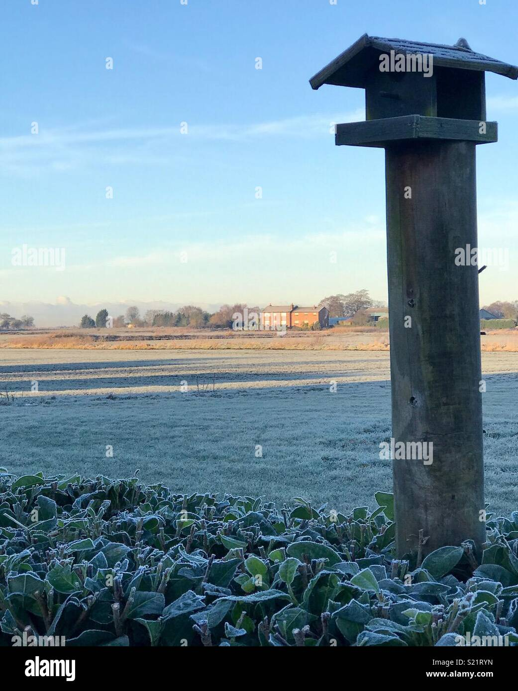 A frosty morning on Irlam Moss - Stock Image