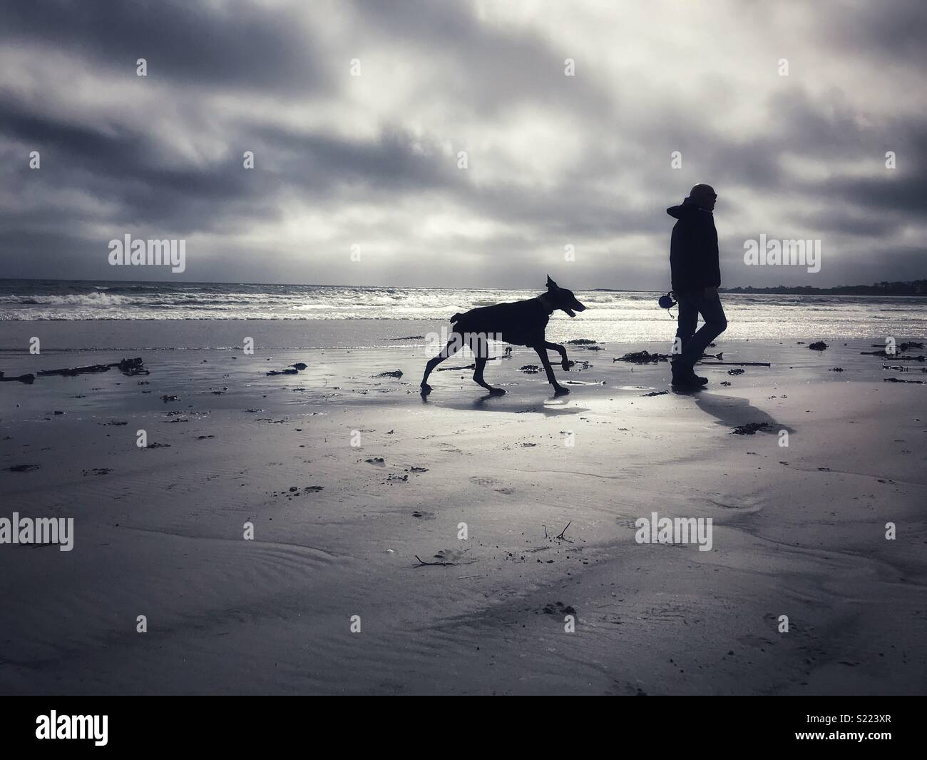 Walking the dog along the beach. - Stock Image