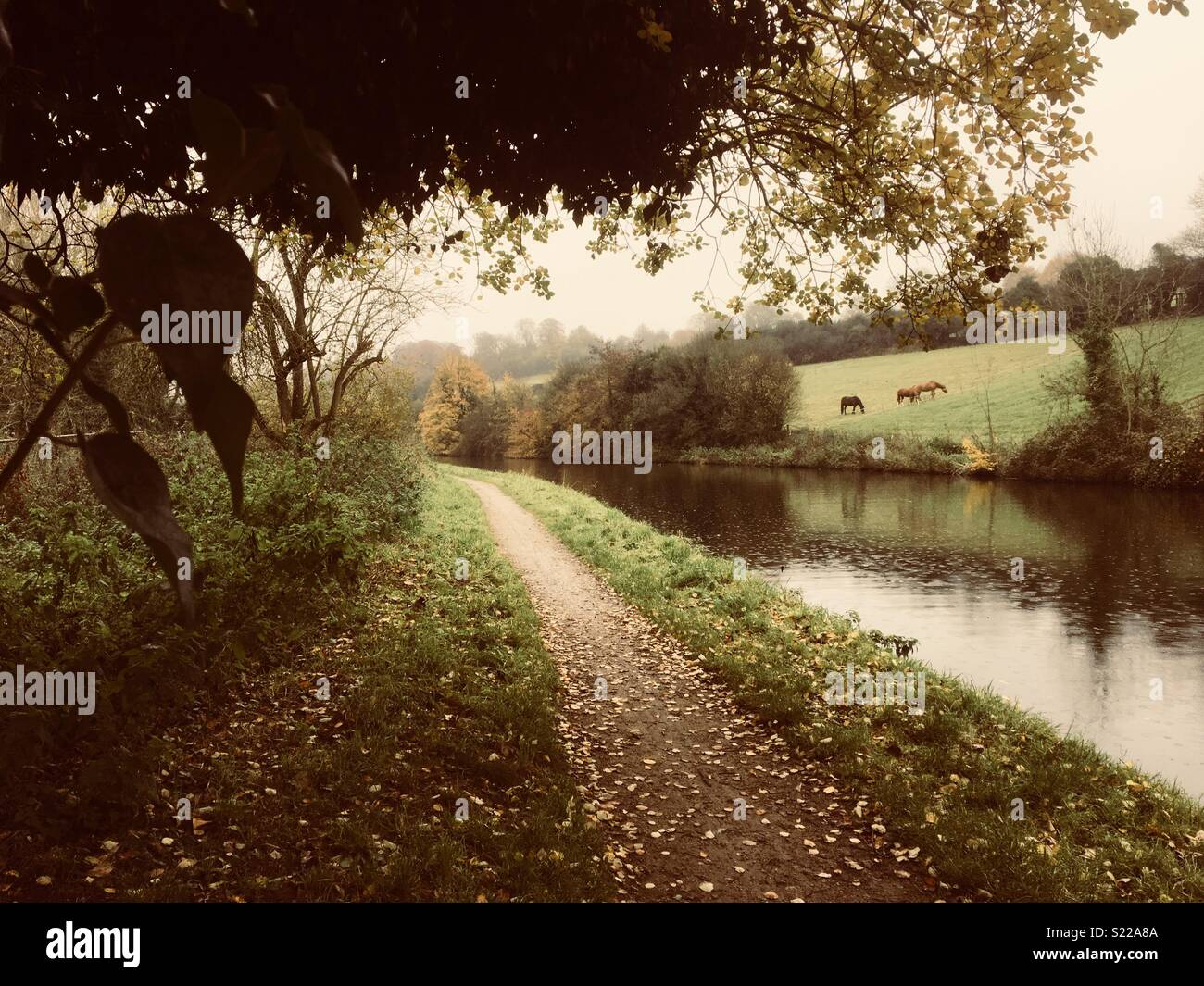 Autumnal towpath - Stock Image