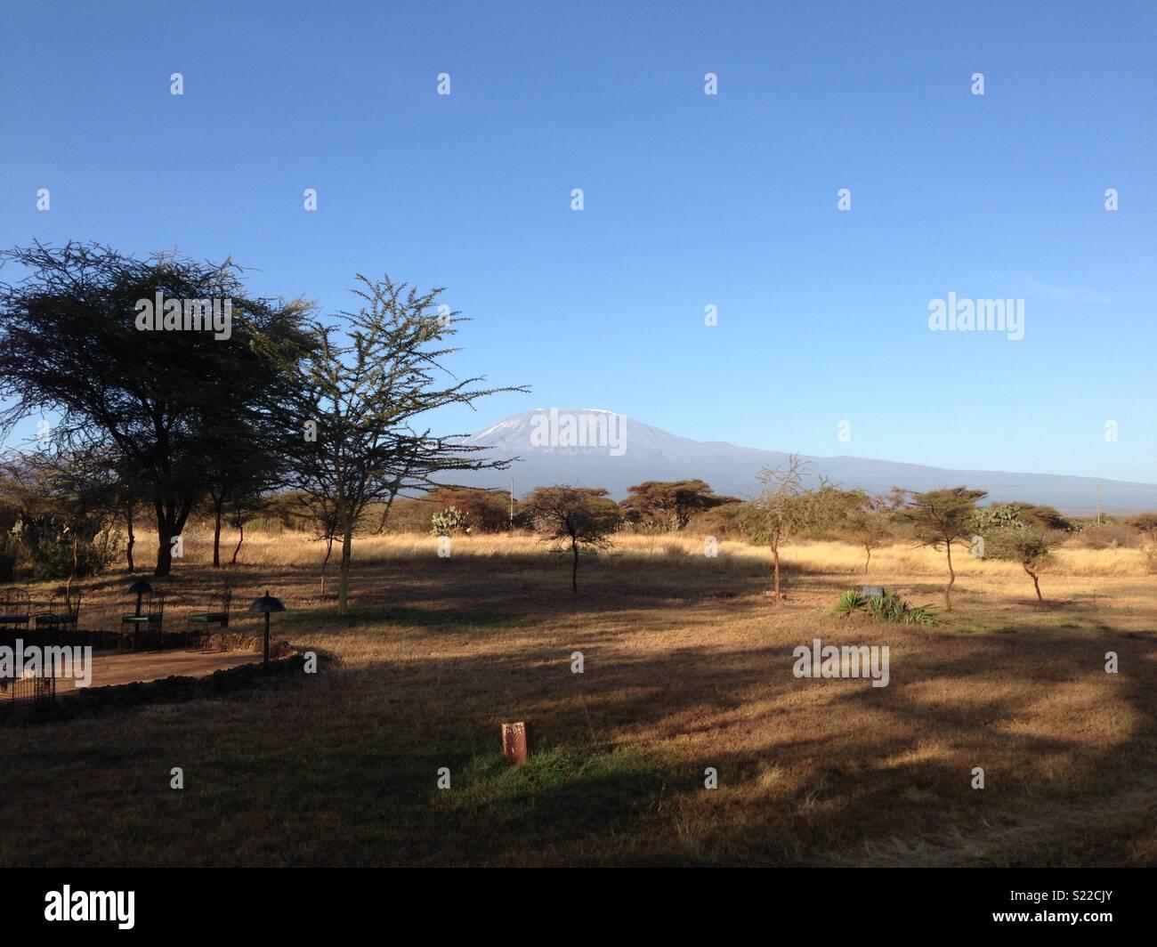 Mount Kilimanjaro - Stock Image