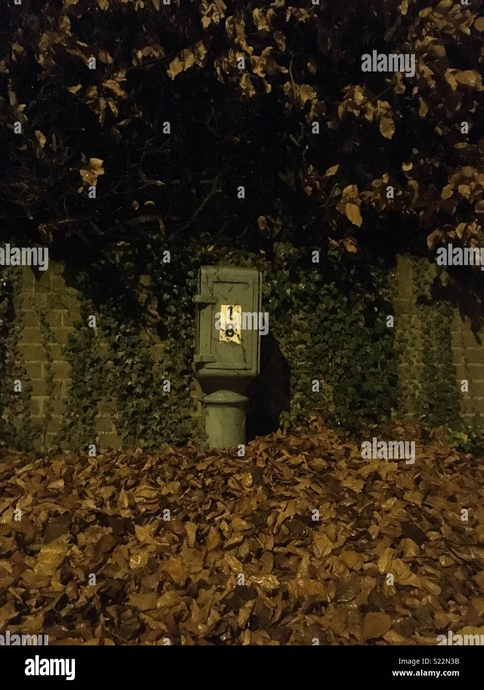 Street furniture in a pile of leaves pictured at night under streetlights. - Stock Image