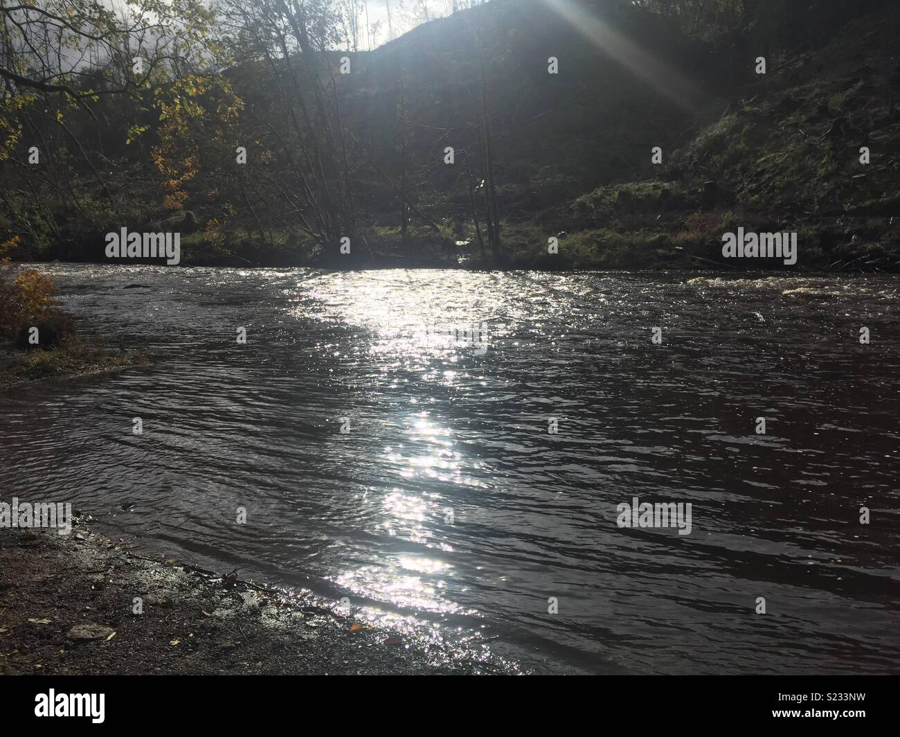 Chatelherault country park river Avon - Stock Image