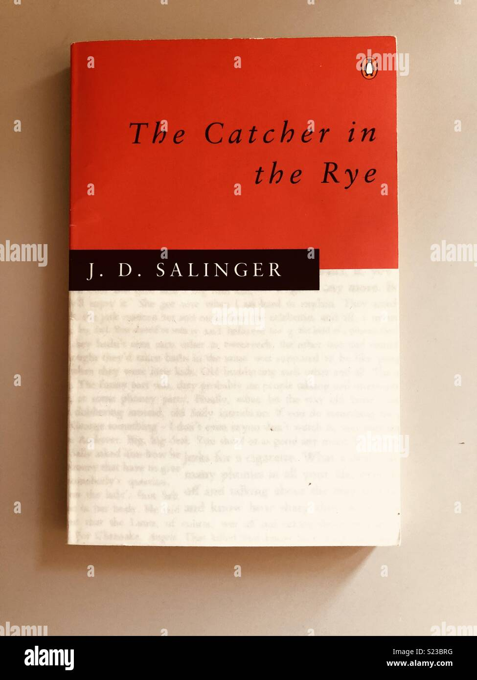 The catcher in the rye by J. D. Salinger paperback - Stock Image