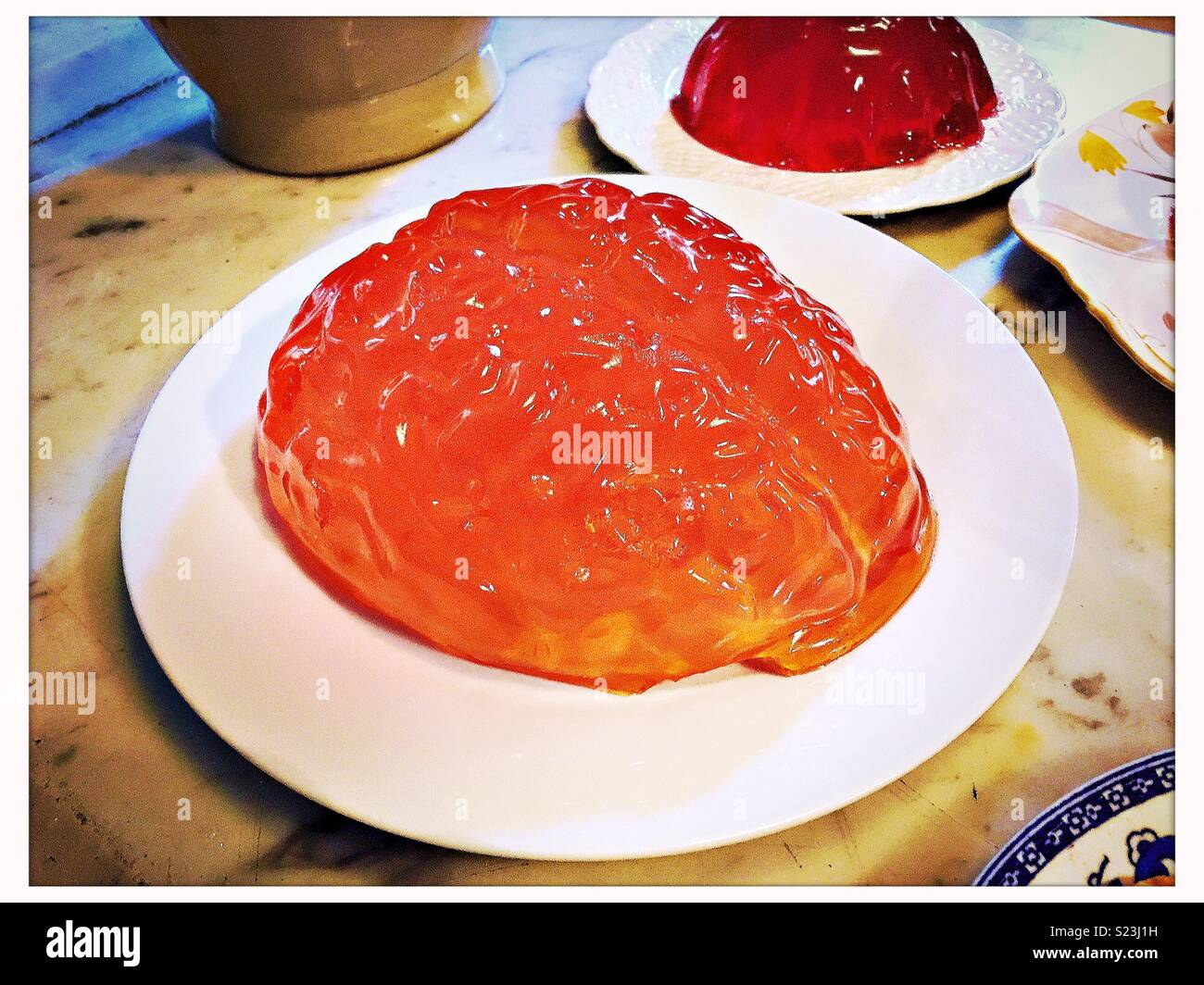 Brain made of jelly/jello on a plate. Stock Photo