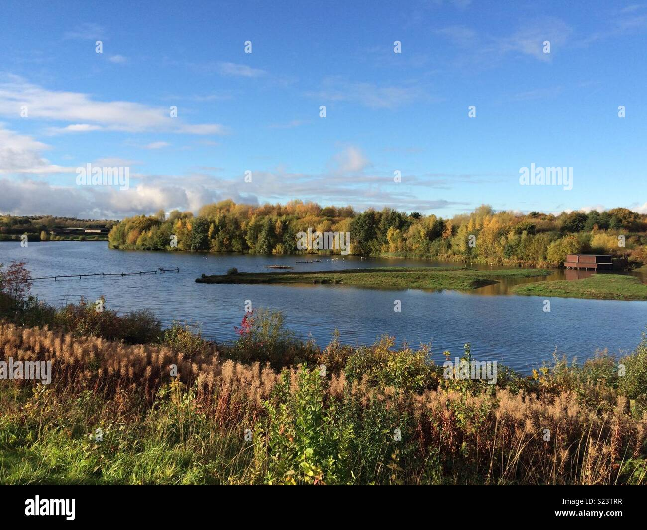 Taken at Sandwell Valley Nature Reserve in Autumn 2016 - Stock Image