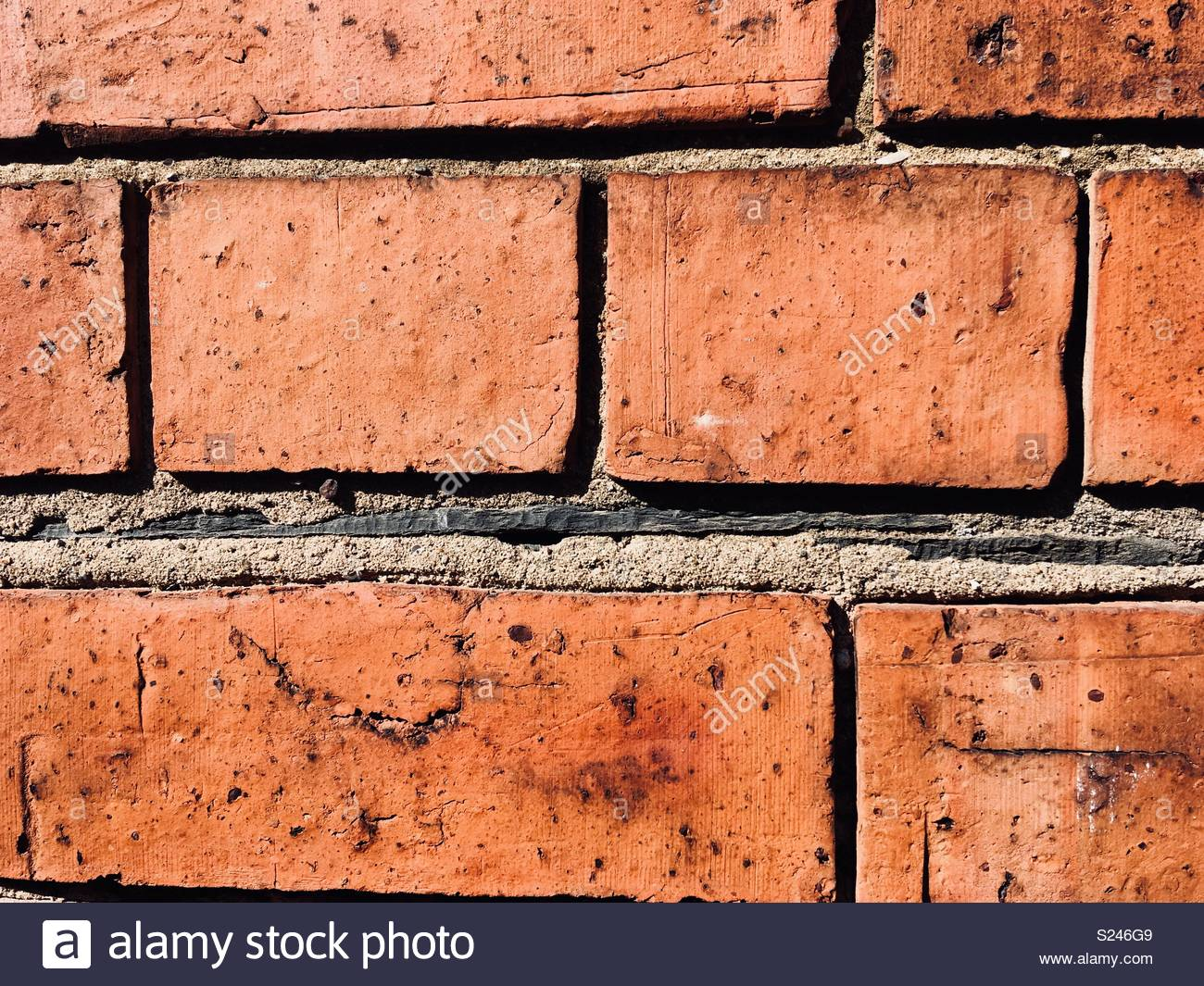 Slate damp proof situated in a brick wall - Stock Image