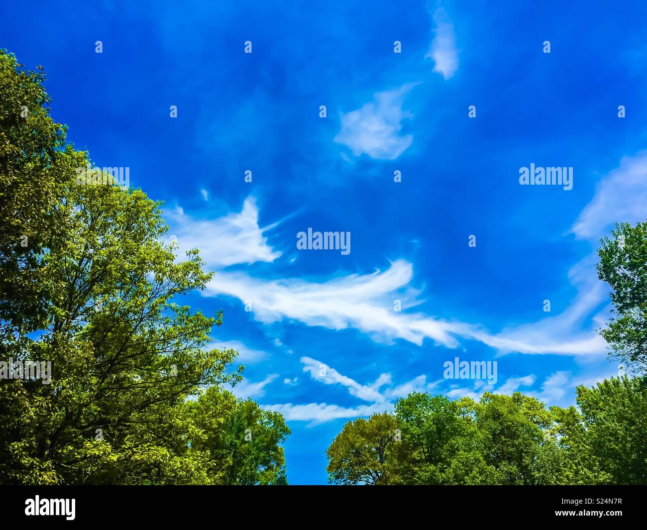 Cloud obsession - Stock Image