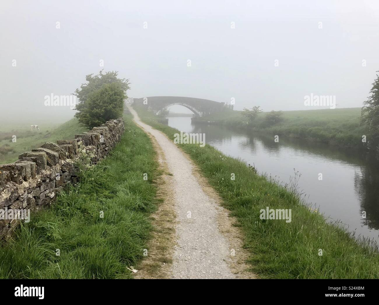 Misty morning on canal towpath - Stock Image