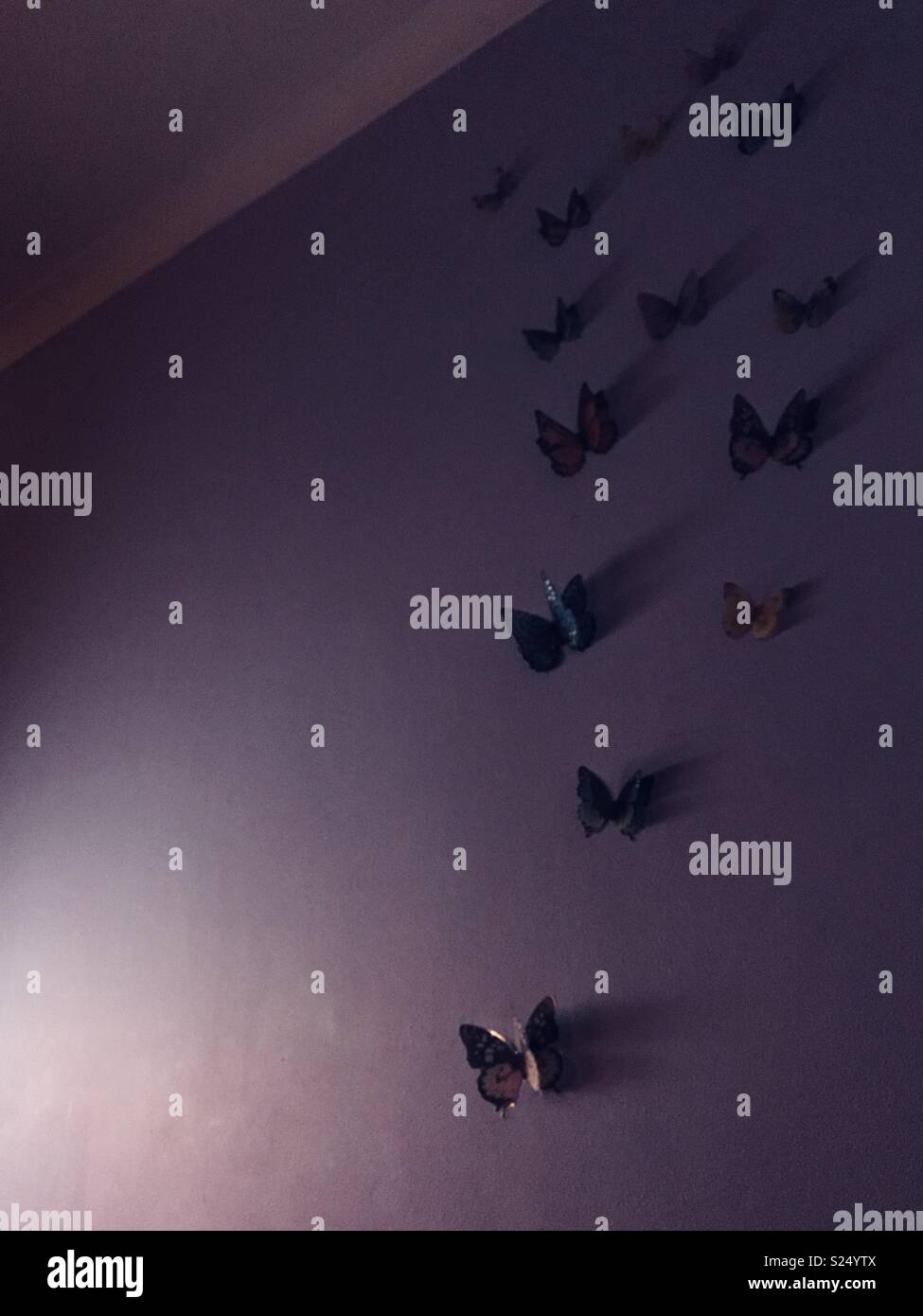 Butterfly decals climbing a wall - Stock Image