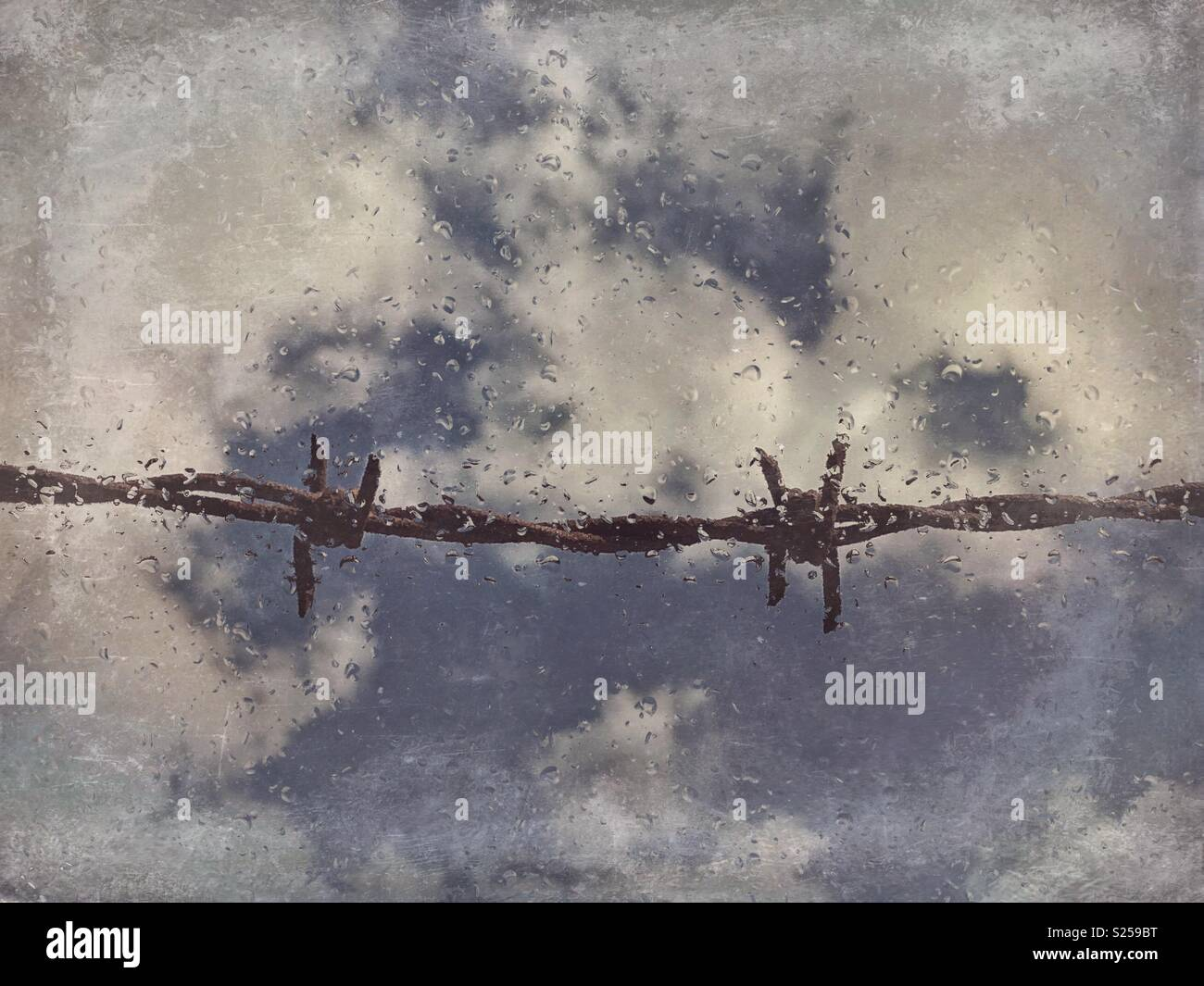 Barbed wire seen through dirty window with raindrops - Stock Image