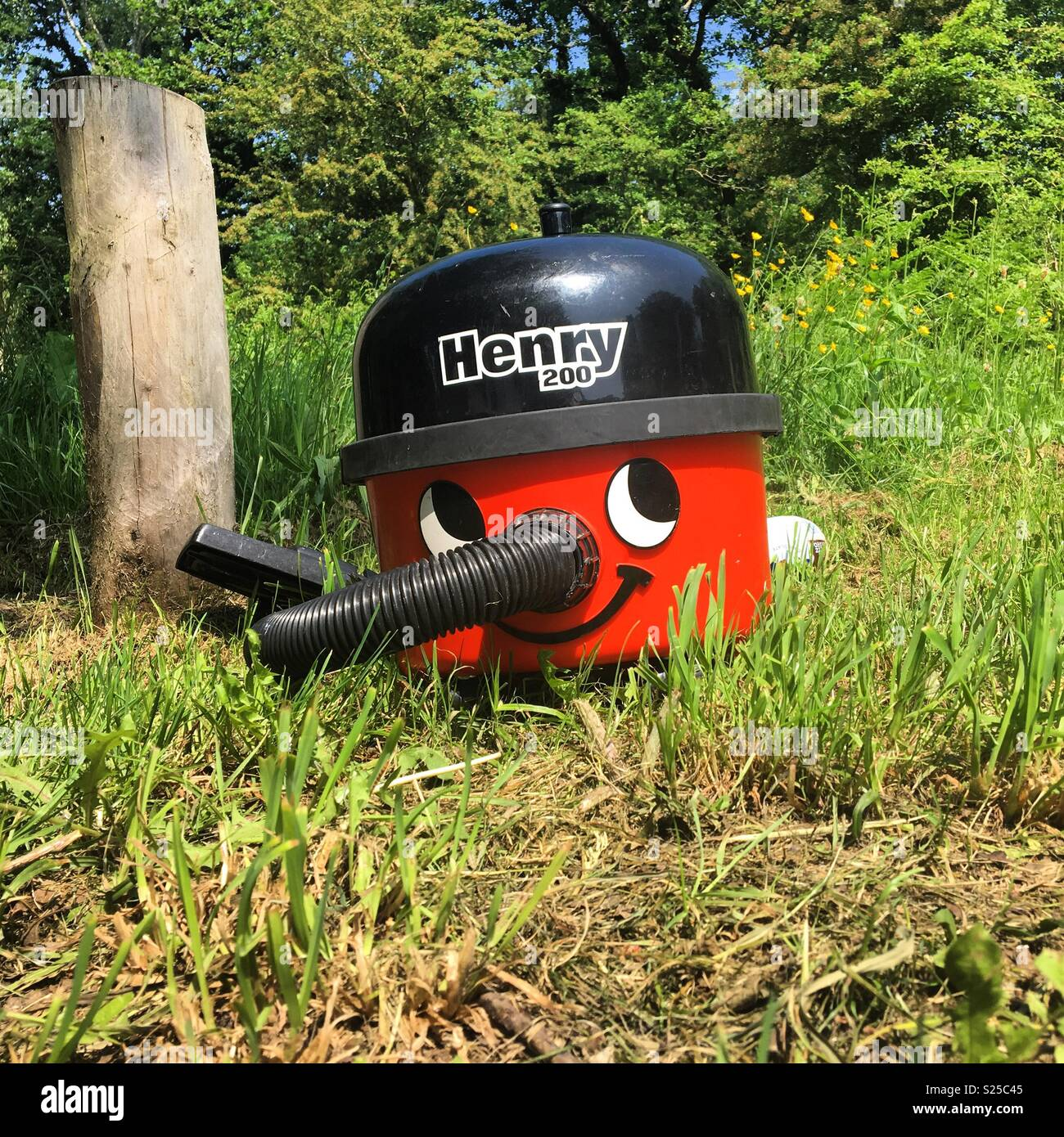 An old Henry hoover is dumped at Bookham Common in Surrey, May 2018. - Stock Image