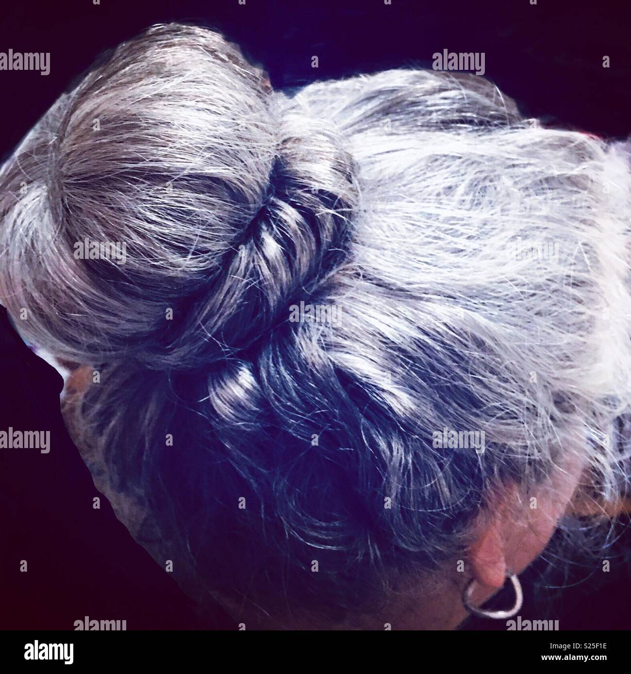 Natural Grey hair in bun on 40s age woman - Stock Image