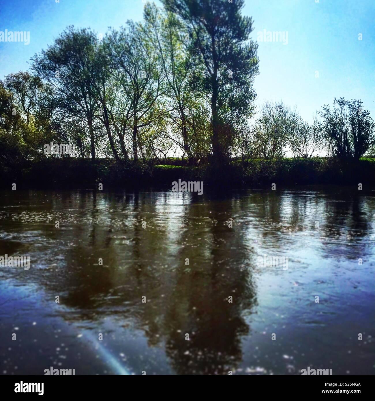 trent river began seeping - HD1300×1390