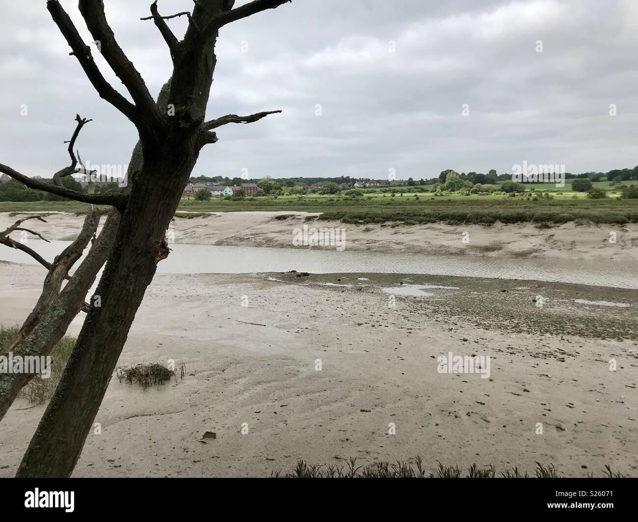 River Colne Estuary Essrx - Stock Image