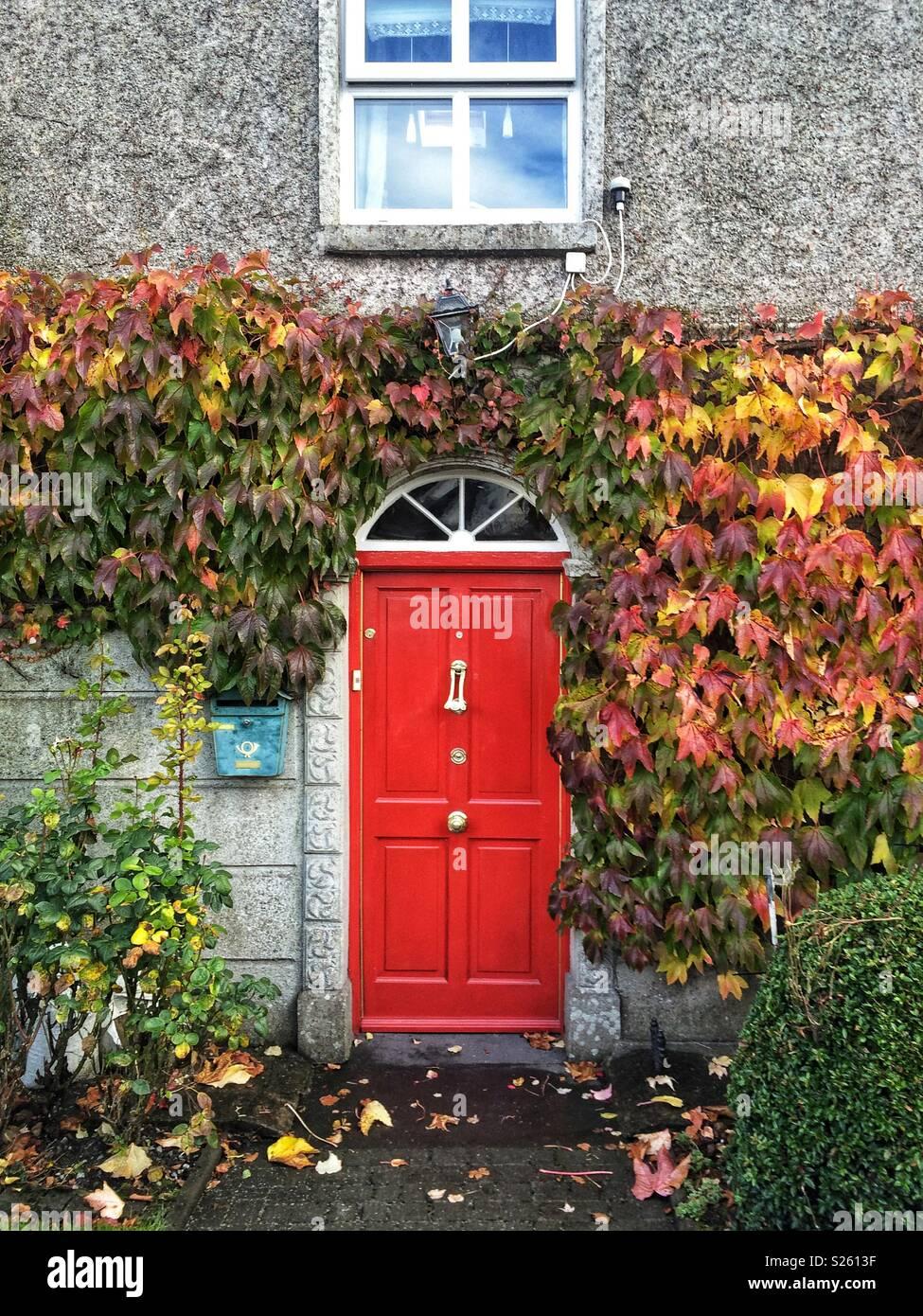 Ivy Front Door Stock Photos Ivy Front Door Stock Images Alamy