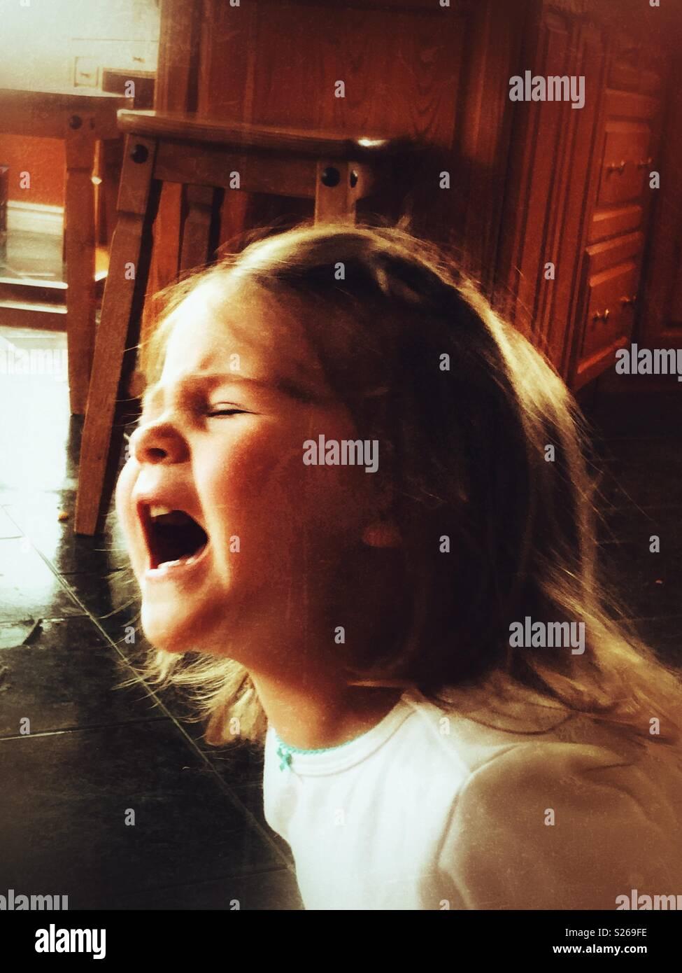 Toddler girl screaming during a temper tantrum - Stock Image