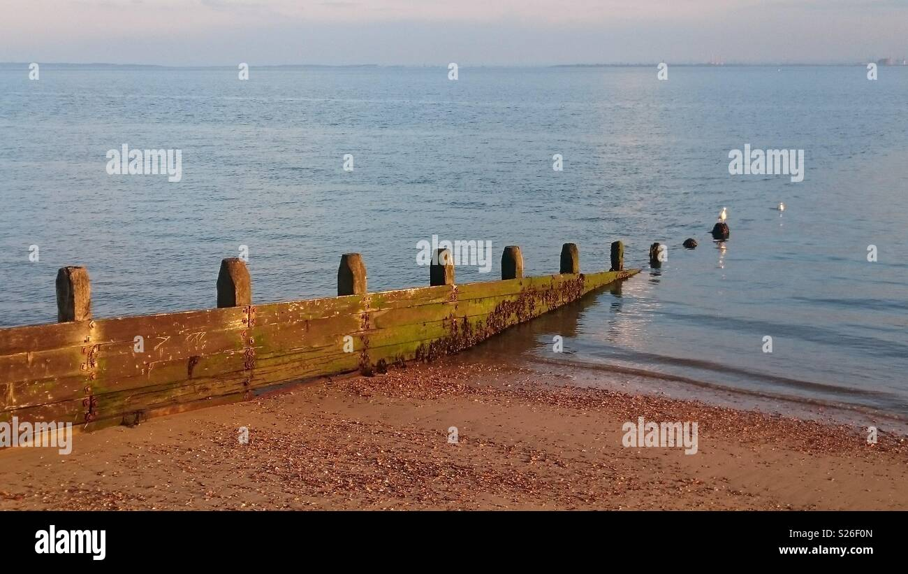 A view from the gravel shore at Westcliff-on-Sea, with gentle waves lapping, and two out of focus seagulls off the end of a wooden groyne. Observed in Spring. Stock Photo