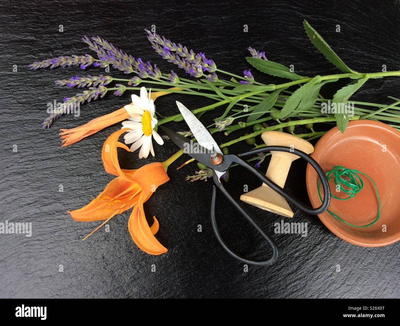 Elevated view on floristic background. Blooming lavender, single blossom of a marguerite, day lily, vintage scissors and green florist wire from a wooden spool Stock Photo