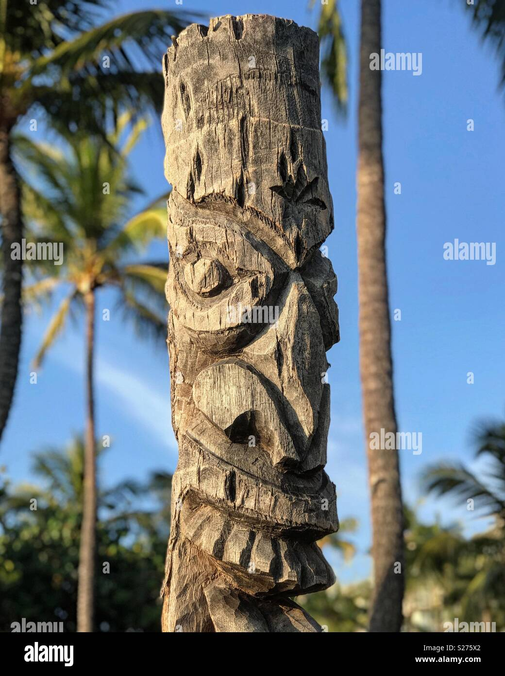 In Hawaii, a Polynesian tiki display is carved from the remaining trunk remnants of a cut down palm tree. - Stock Image