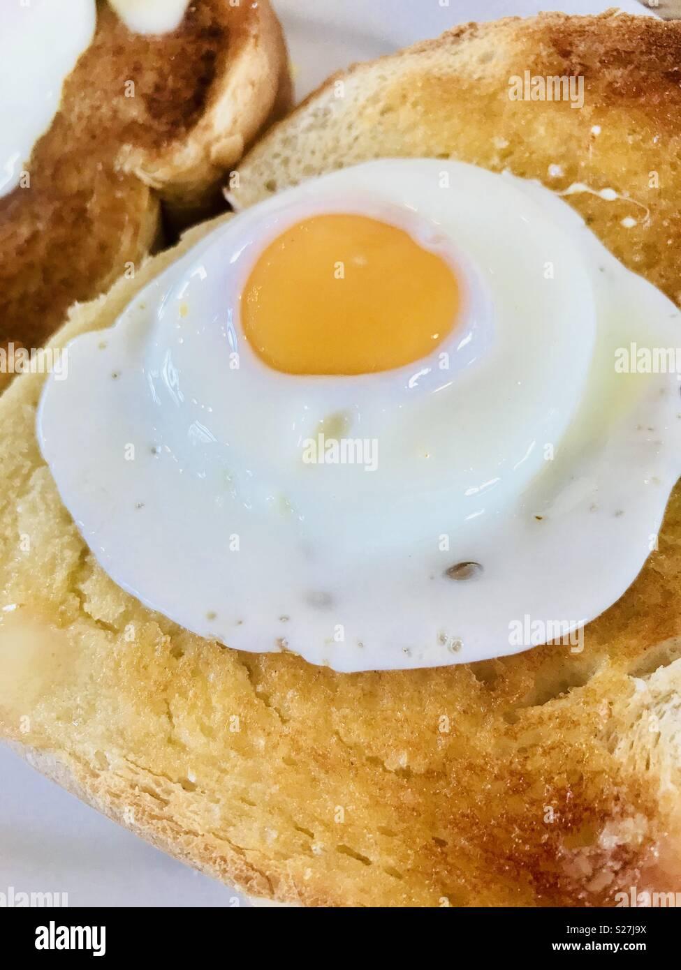 Fried egg on white toast - Stock Image