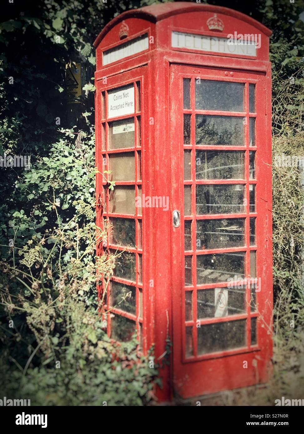 Old Red telephone box being claimed back by nature - Stock Image