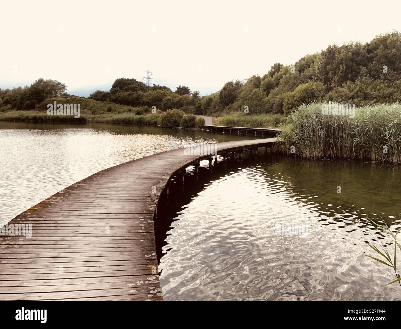 Walk, evening, pond, solitude, meditation, silence, summer, hot day, peace, tranquility, water grass, curve path, reserve, Cardiff, wales, uk, Europe, - Stock Image