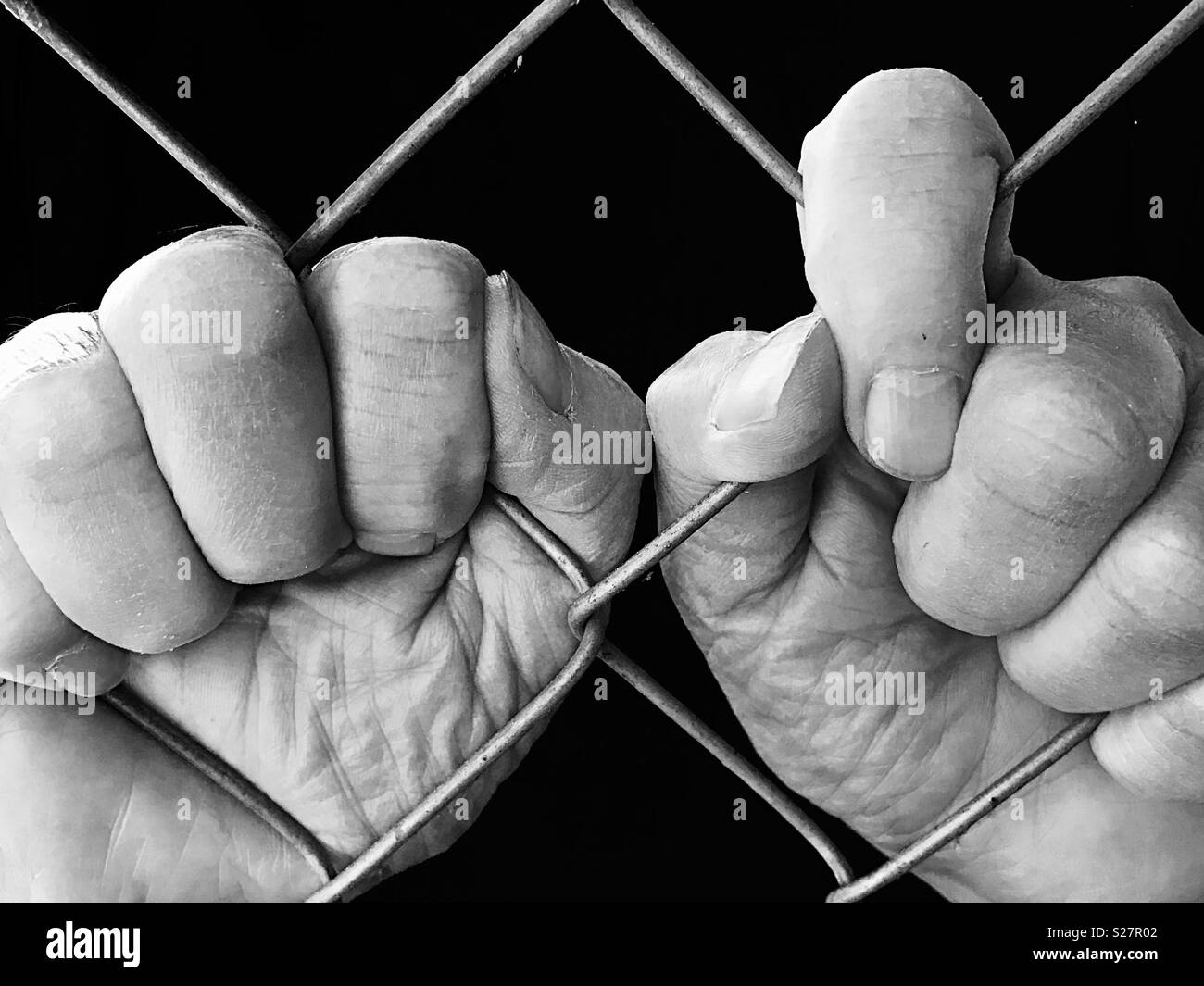 Two hands grasping chain link fence, in black and white - Stock Image