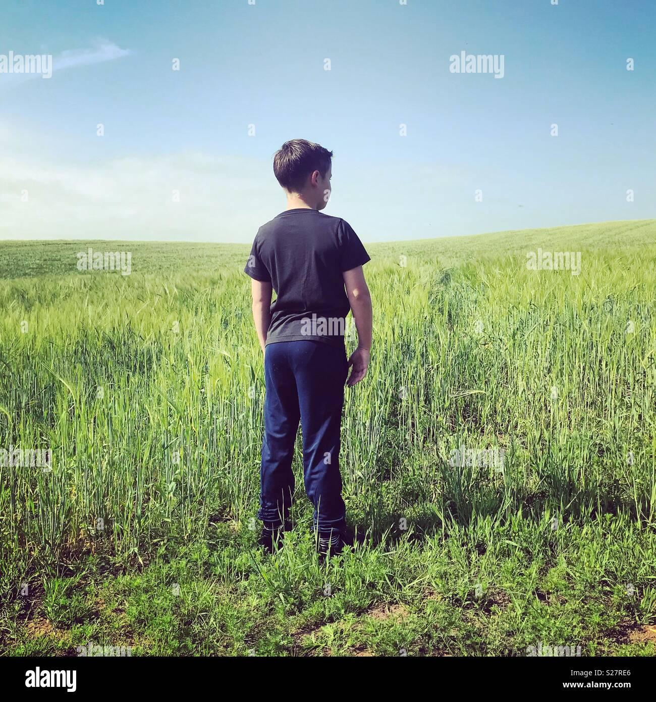 Pre teen boy standing in a field in Summertime - Stock Image