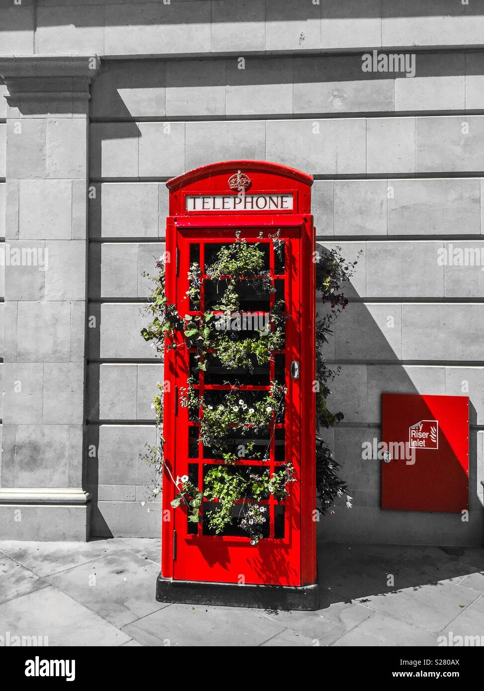 English Red Telephone Box Full Of Flowers Stock Photo 311191858 Alamy