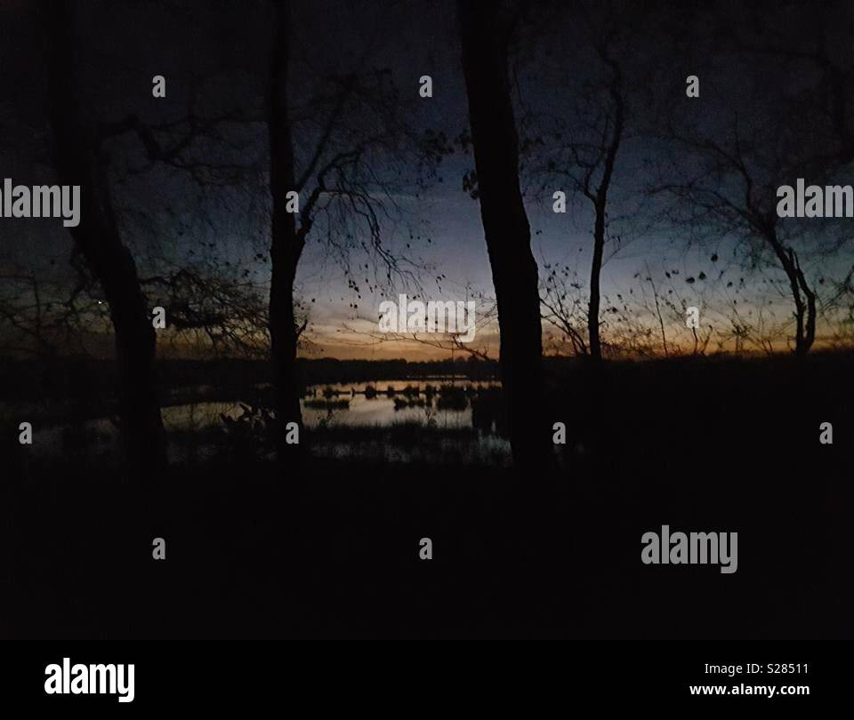 Irlam Moss Sunset - Stock Image